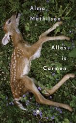 Alles is Carmen (e-Book)