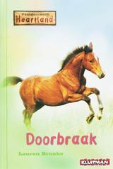 Doorbraak (e-Book)