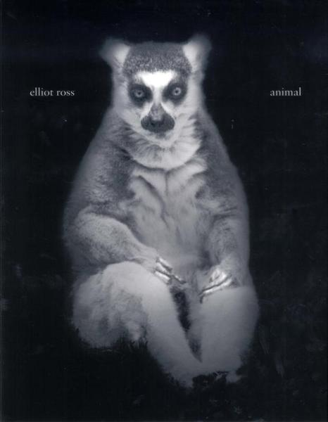 Animal - Eliott Ross (ISBN 9789053307304)