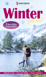 Harlequin Winterspecial (e-Book)