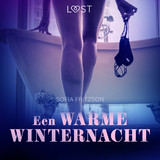 Een warme winternacht