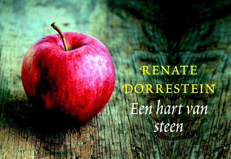 Citaten Uit Een Hart Van Steen : Een hart van steen dl renate dorrestein boeken
