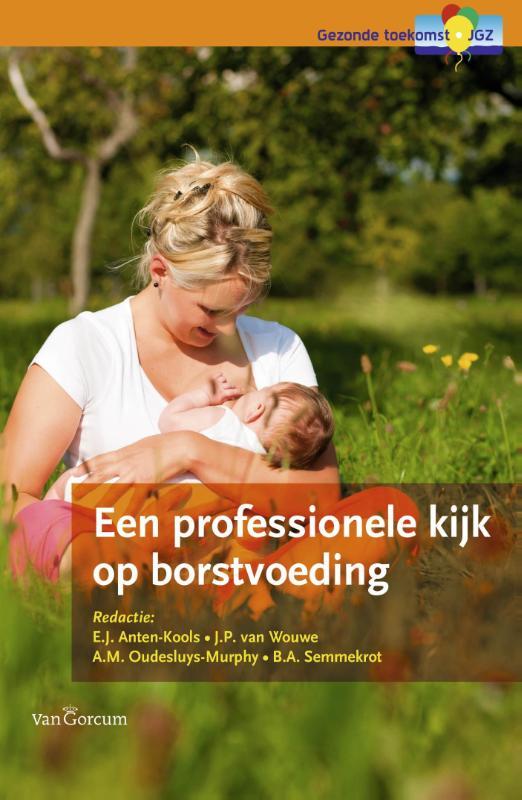 Kaft van e-book Een professionele kijk op borstvoeding