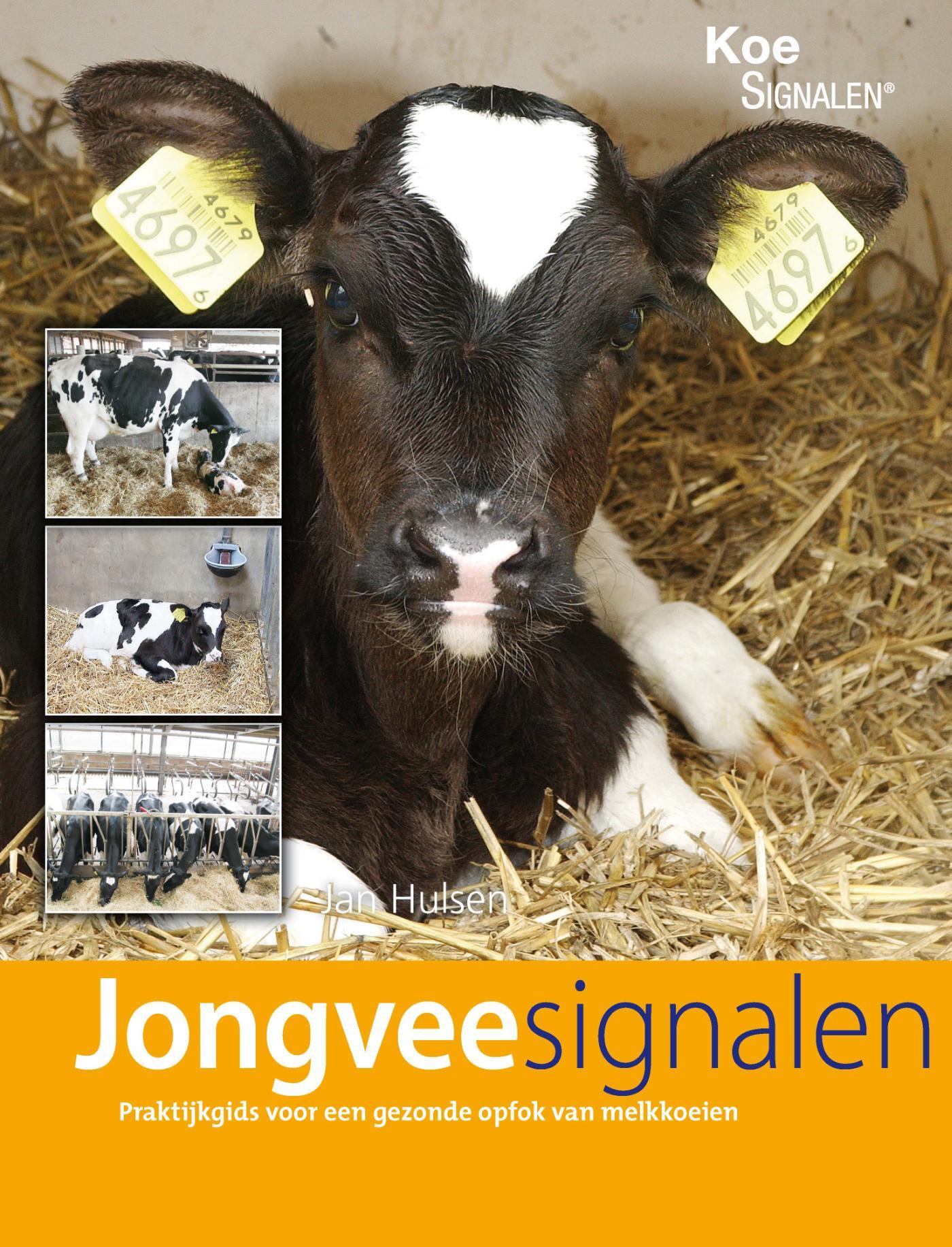 Jongveesignalen (e-Book)
